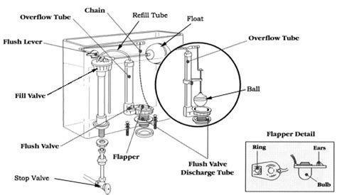 Parts Of A Water Closet by How A Toilet Works