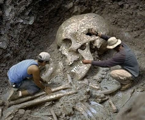 real giant humans submited images