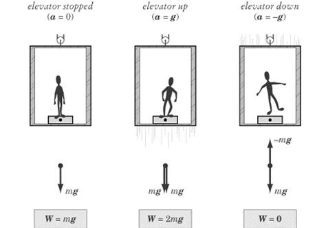 physics of the human lose weight for books sparknotes sat physics weightlessness