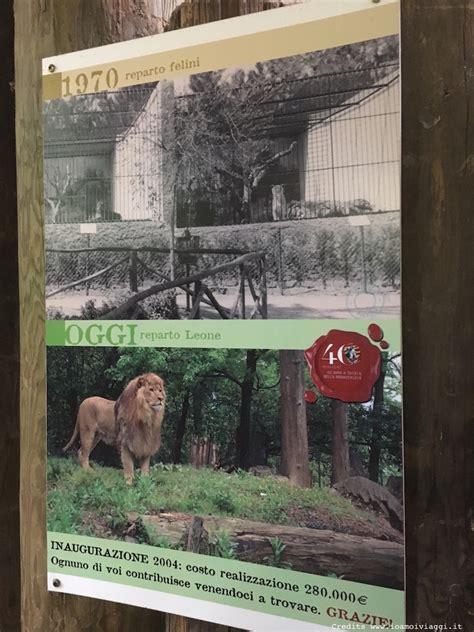 ingresso zoo di pistoia lo zoo di pistoia le cose sono cambiate