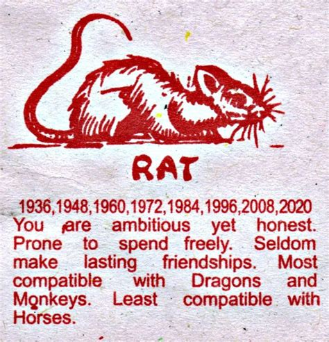 new year rat compatibility 17 best images about horoscopes on