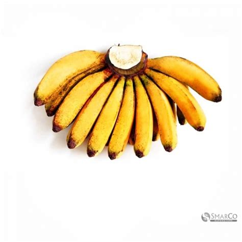 1 Sisir Pisang Ambon detil produk pisang barangan jumbo per sisir 2022030150007