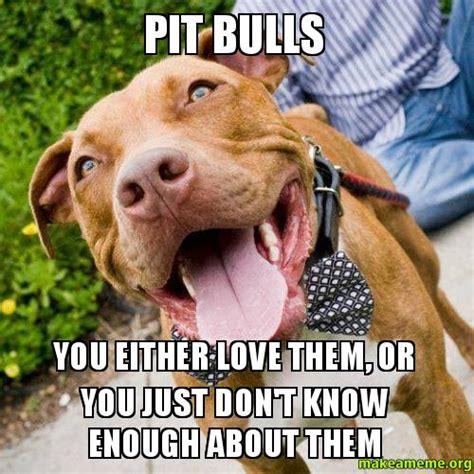 Pitbull Meme - pit bull dog memes memes
