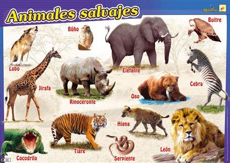 imagenes de animales salvajes para niños dibujos recortables de animales salvajes imagui