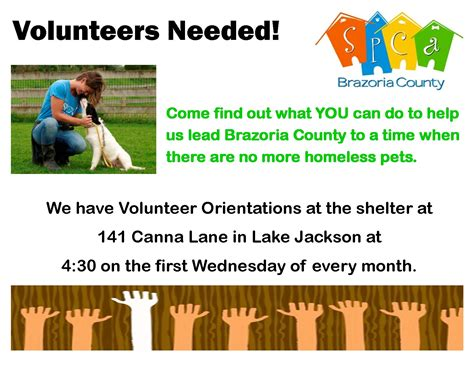 volunteers needed flyer template volunteers needed flyer template www pixshark images galleries with a bite