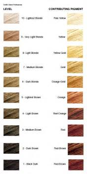 hair color levels how to achieve a level 8 hair color the most difficult of