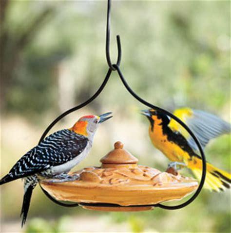 blue bird feeders and food bird feeders