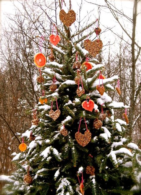 decorate an outdoor holiday tree for animals dot com women