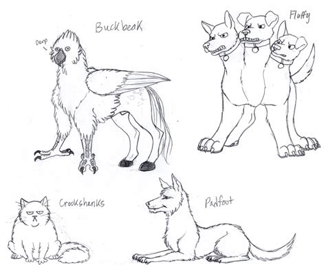 harry potter fluffy coloring pages harry potter animals by cartoonlion on deviantart