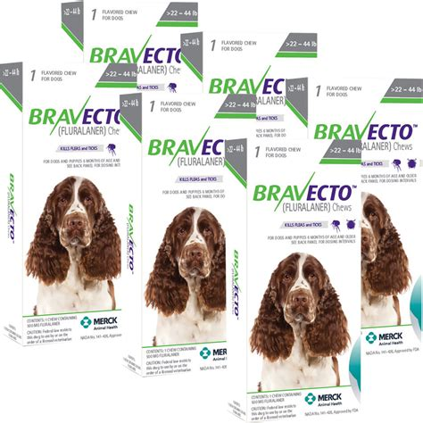 bravecto for dogs 22 44 lbs bravecto 22 44lbs 6 chews