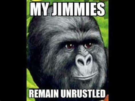 Gorilla Munch Meme - that really rustled my jimmies trending videos gallery