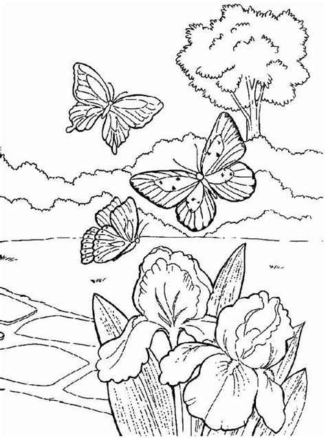 Spring Coloring Pages Springtime Coloring Pages