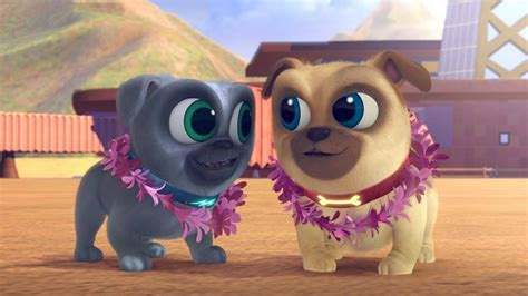 puppy pals travel pets puppy pals 4 things every parent should afropolitan