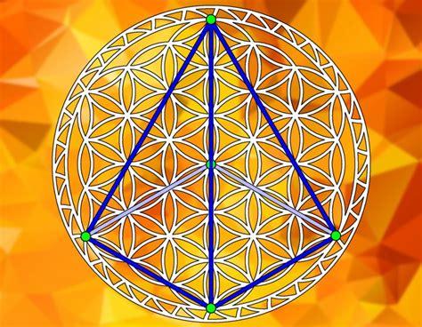 fiore della vita geometria sacra porta alimenti in acciaio fiore della vita