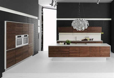 Contemporary Kitchens Cabinets Modern Kitchen Cabinets For Modern Kitchens Decozilla