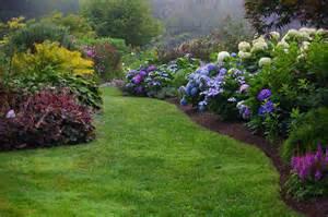 best hydrangea for small gardens ideas photograph scroll d