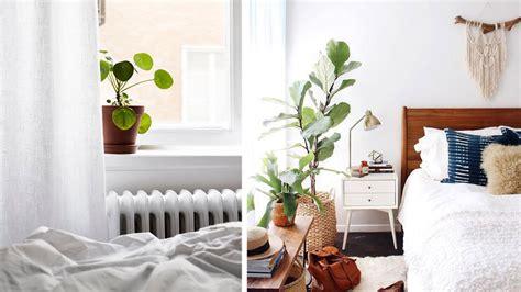 Une Plante Dans Une Chambre by Je Veux Des Plantes Dans Ma Chambre
