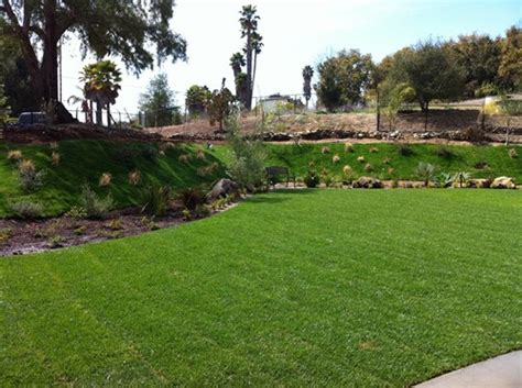 average cost of backyard landscaping landscaping backyard cost image mag