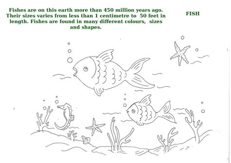 printable ocean animal pictures free coloring pages