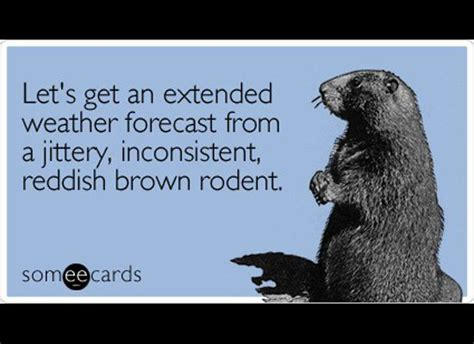 groundhog day phrase groundhog day winter quotes and winter quotes on