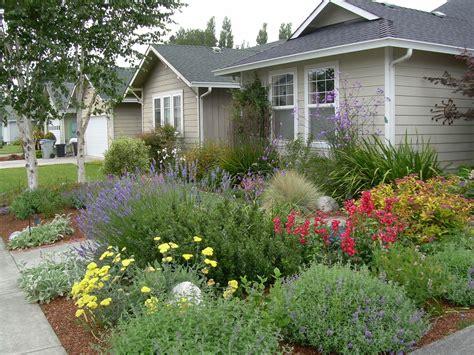 Garden Visions: Donna Wildearth, Landscape Designer
