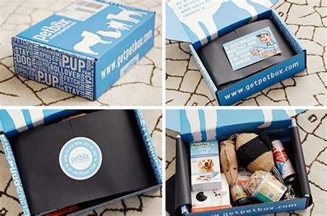 monthly subscription boxes for dogs monthly pet subscription box from petbox milk