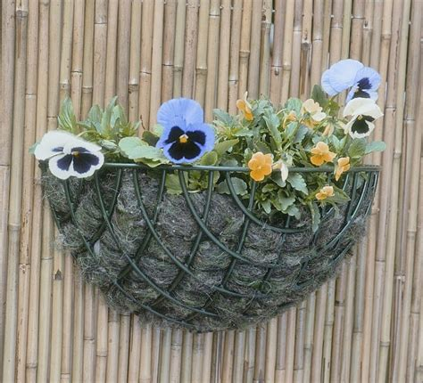 Wire Wall Planter by Standard Wire Wall Basket Planter 35cm