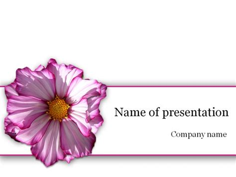 Free Awesome Powerpoint Templates Spring 2013 Powerpoint Flower Template