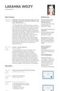 Animal Caretaker Sle Resume by Assistant V 233 T 233 Rinaire Exemple De Cv Base De Donn 233 Es Des Cv De Visualcv
