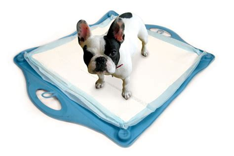 puppy pad holder pad holder search results million gallery