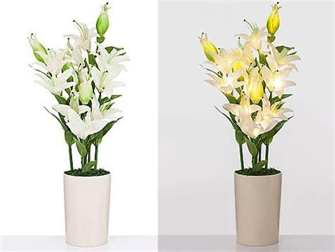 Lilien Im Topf Kaufen 2417 by Led Lilien Bouquet Keramik Topf Leuchtende Blumen