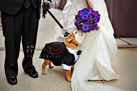 puppy bouquet wedding photography