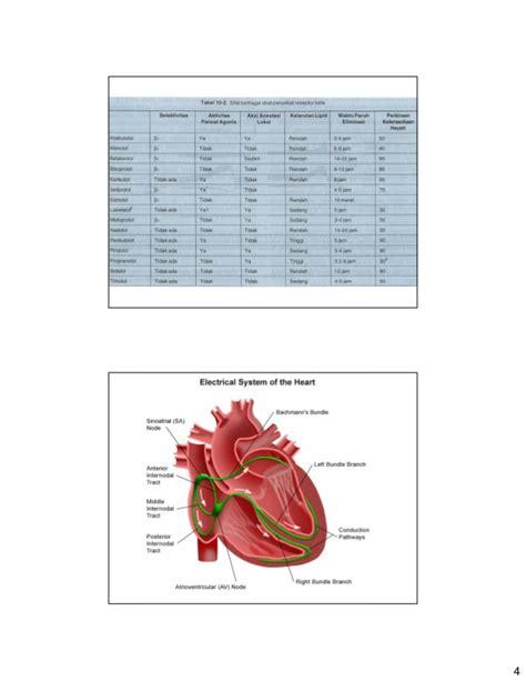 Obat Nitrogliserin obat kardiovaskular