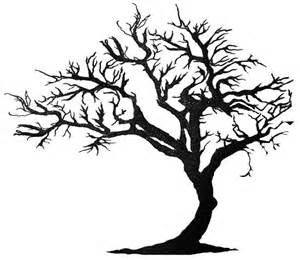 1000 images about tree of life on pinterest trees a tree and tree