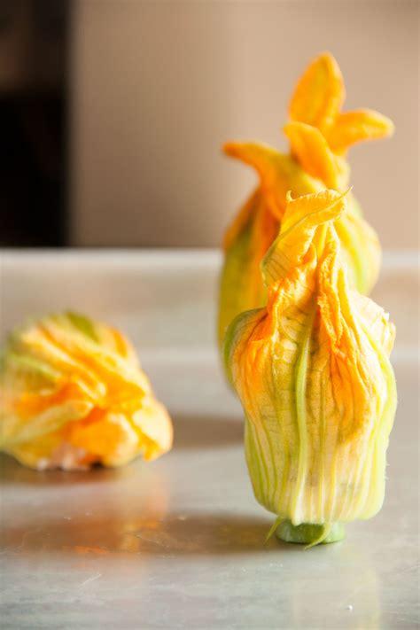 fiori di zucchina fiori di zucchina morbidi ripieni alla ricotta kitchen
