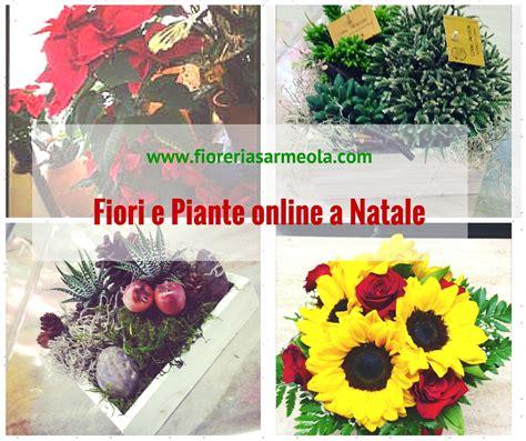 piante e fiori on line fiori e piante on line idee per interni e mobili