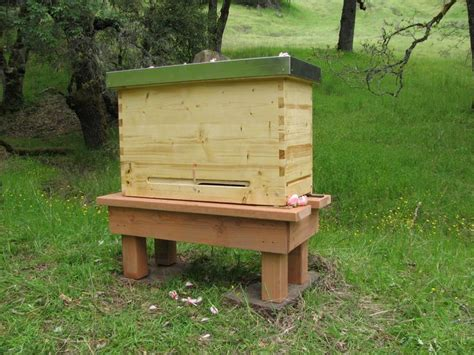 Golden Top Bar Hive by 7 Best Images About Bee Keeping On Jars Bee