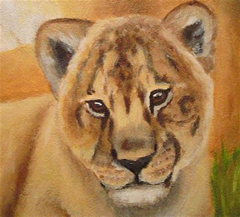 drawing and painting animals 178221321x google image result for http www abicushman com mainimages lionmural cub jpg animal art