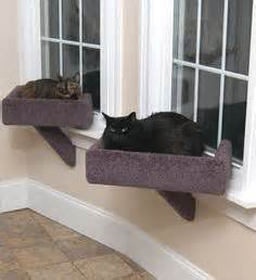 deluxe pet cat window seat perch deluxe pet cat window seat perch our home