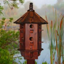 cool bird house plans cool bird house plans bird home plans ideas picture