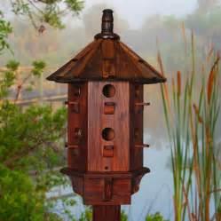 cool bird house plans bird house plans birdhouse designs for unique look indoor and outdoor design ideas