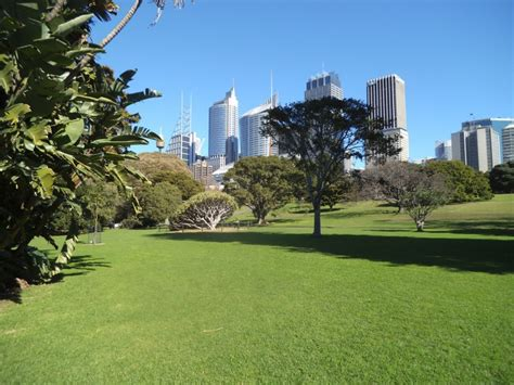 garden sydney royal botanic gardens sydney sydney