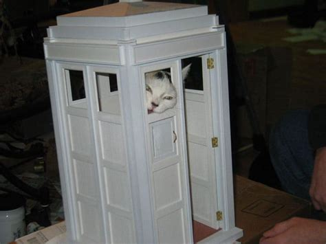 tardis cat house plans woodwork kitty playhouse plans pdf plans