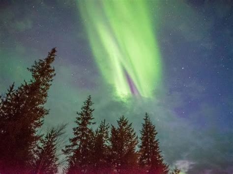 new year northern lights lapland new year northern lights helping dreamers do