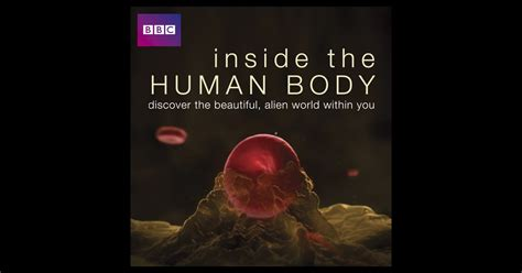 inside the body fantastic 1844031837 inside the human body on itunes