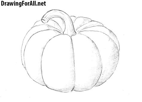 draw a pumpkin for how to draw a pumpkin drawingforall net
