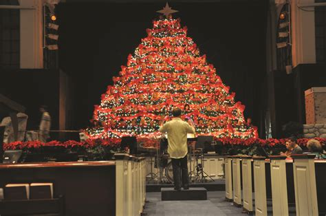 singing christmas tree branches out sarasota your observer