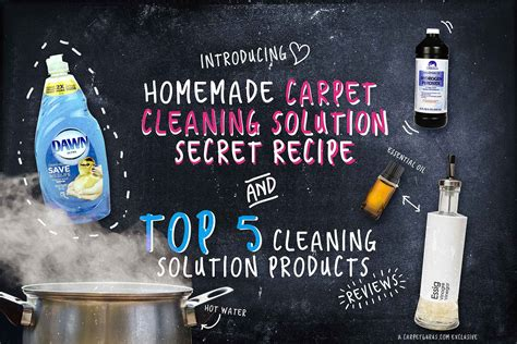 Which Carpet Cleaner Solution Is Best - carpet stain remover the best carpet cleaning