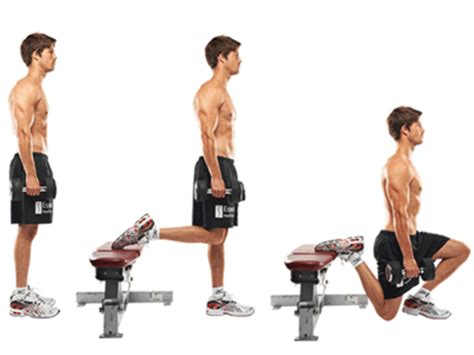 dumbbell bench lunges 9 must do squat variations to torch fat demolish your