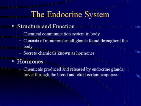 Download Ch 45 Endocrine System Powerpoint Presentation Endocrine System Powerpoint